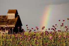 Prairie Storm Clouds Stock Photo