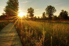 Prairie Sunset. A beautiful warm summer sunset view along a long boardwalk as it winds through a Midwest prairie in northwest Ohio stock photo