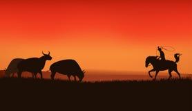 Prairie sunset Royalty Free Stock Photo