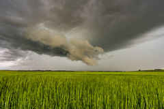 Prairie Thunder Storm Royalty Free Stock Images