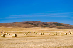 Prairie Views Royalty Free Stock Photos