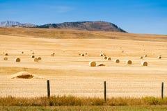 Prairie Views Royalty Free Stock Photography