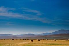 Prairie Views Royalty Free Stock Photo