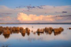 Prairie Wetland Royalty Free Stock Images