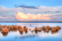 Prairie Wetland royalty free stock photos