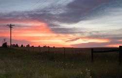 Prairie with Wildflowers and Colorful Sunser royalty free stock photography