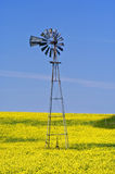 Prairie Windmill. Old windmill in a Canola field Stock Image