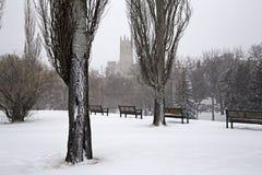 Prairie Winter Scene Stock Photography