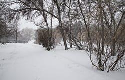 Prairie Winter Scene Royalty Free Stock Images