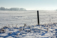 Prairie Winter. Winter snow and frost covered farmers field Royalty Free Stock Images