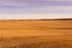 Prairiegebied na de Oogst royalty-vrije stock foto's