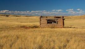 Prairiehoeve Stock Afbeeldingen