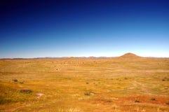 Prairies de l'Arizona Photos libres de droits