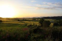 Prairies en Majorque Photographie stock