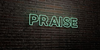 PRAISE -Realistic Neon Sign on Brick Wall background - 3D rendered royalty free stock image Stock Image