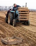 Praktische Arbeit in den ländlichen Gebieten von Transcarpathia im Frühjahr Stockfotografie