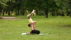 Praktiserande acroyoga för härliga par Unga yogainstruktörer övar i en stad parkerar på grönt gräs Lyckade två stock video