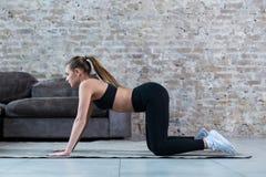 Praktiserande gymnastik för nätt slank idrottskvinna som gör övningar som inomhus står på alla fours Arkivbilder