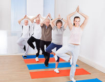 Praktiserande yoga för folk i trädposition på idrottshallen Arkivfoton