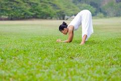 Praktiserande yoga för härlig kvinna i parkera Royaltyfri Bild