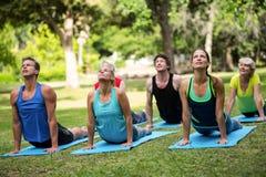 Praktiserande yoga för konditiongrupp Arkivbilder