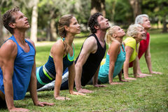 Praktiserande yoga för konditiongrupp Royaltyfri Foto