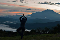 Praktiserande yoga för oidentifierad kvinna med Mount Kinabalu som backgr Royaltyfria Bilder