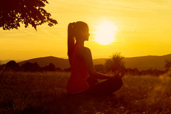 Praktiserande yoga för ung idrotts- kvinna på en äng på solnedgången Fotografering för Bildbyråer