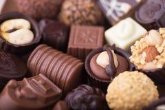 Pralina belga del cioccolato Immagine Stock