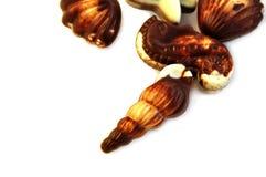 Praline Assorted del cioccolato. Immagini Stock