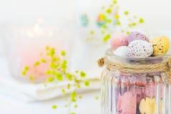 Praline-mehrfarbige kleine Wachtel-Osterei-Pastellfarben im Weinlese-Glasgefäß auf weißen hölzernen Tabelle Yello-Blumen Stockfotografie