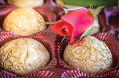 Praline and Rose Royalty Free Stock Photo