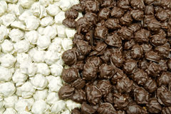 Pralinen White and brown praline Royalty Free Stock Images