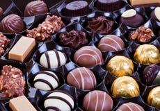 pralines шоколада стоковые изображения