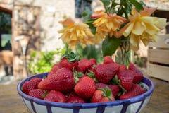 Prall, w?hlte Hand Erdbeeren vom Gem?segarten aus; Bauernhofleben gelbe Rosen im Hintergrund stockbild