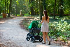 Woman pram walking side back view outside in the park. Mother walking with the pram/ stroller between the woods during sunny day, rear view of attractive woman royalty free stock photos