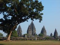 Prambanan Tempel lizenzfreie stockfotografie