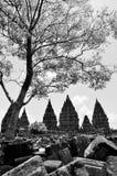 prambanan tempel Royaltyfria Bilder