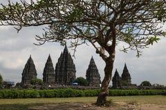 Prambanan Temple near Yogyakarta, Central Java, Indonesia. Royalty Free Stock Image