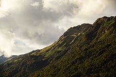 Páramo and rainforest, Papallacta Royalty Free Stock Photo
