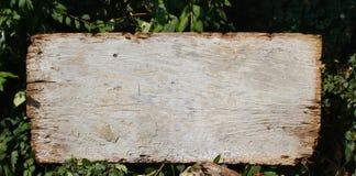 Prancha de madeira Imagem de Stock