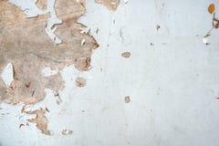 Prancha de madeira branca como o fundo Papel de parede da textura do Grunge fotos de stock