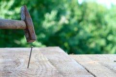 Prancha de madeira com um prego que está sendo martelado no foco em um fundo borrado da natureza imagens de stock royalty free