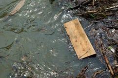 Prancha de madeira de flutuação na água do lago Imagem de Stock Royalty Free