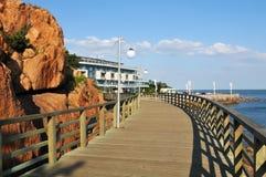 Prancha de madeira do beira-mar Foto de Stock Royalty Free