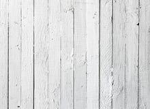 Prancha de madeira pintada branca de Grunge Imagem de Stock