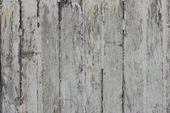 Prancha de madeira velha Imagens de Stock Royalty Free