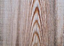 Prancha de madeira velha Fotos de Stock