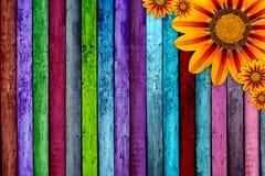 Pranchas & flores de madeira Fotografia de Stock Royalty Free