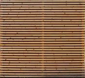 Pranchas de madeira naturais Imagens de Stock Royalty Free